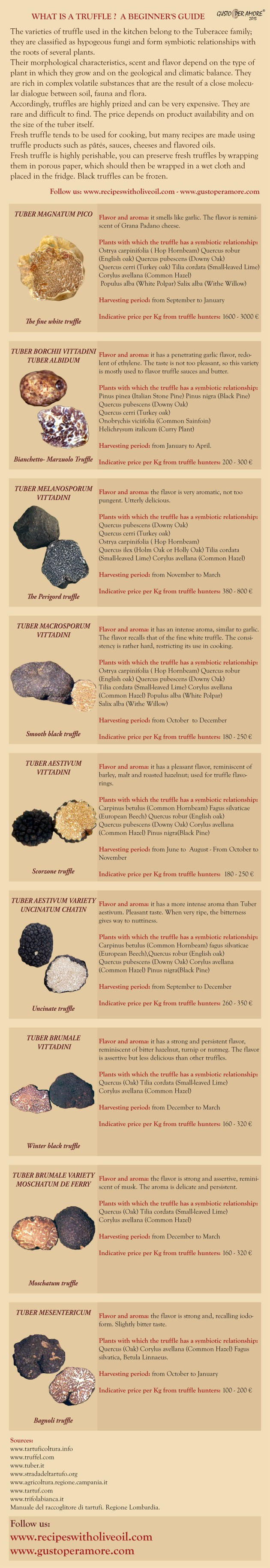 What is truffle- A begginer's guide - Gusto per Amore