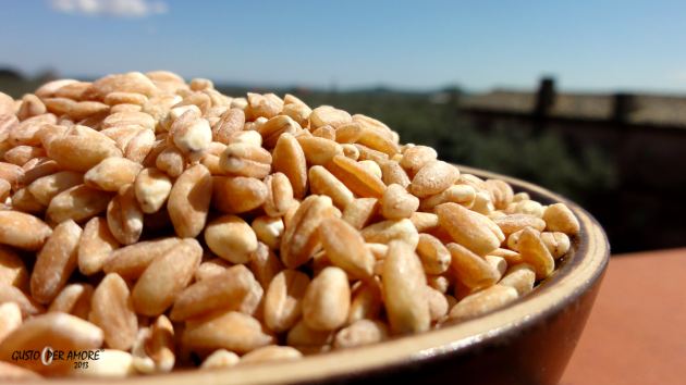 What is farro - Recipes with olive oil - Gusto per Amore