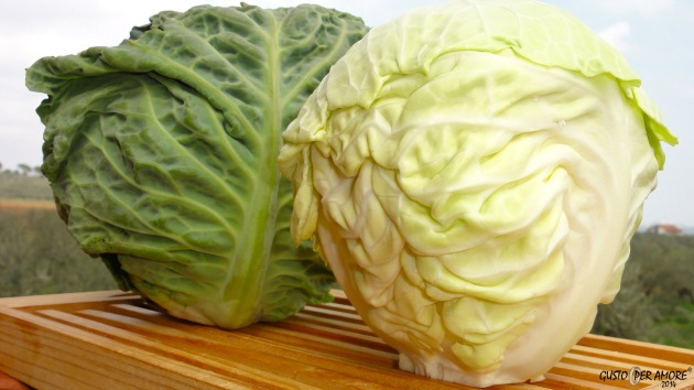 1 Savoy Cabbage - Recipes with olive oil - Gusto Per Amore