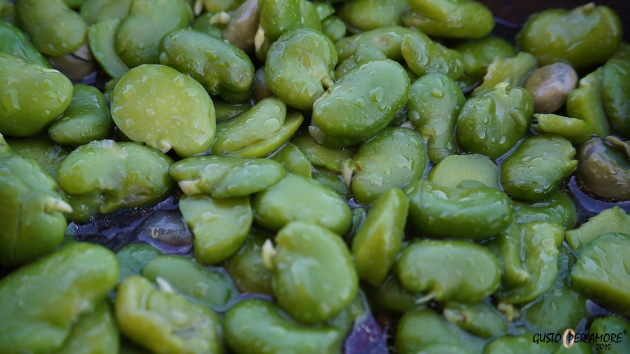 Fava bean are vegetables high in protein perfect to make pasta, soup recipes, but it's easy to make a broad beans cream to fill up savoury tarts.