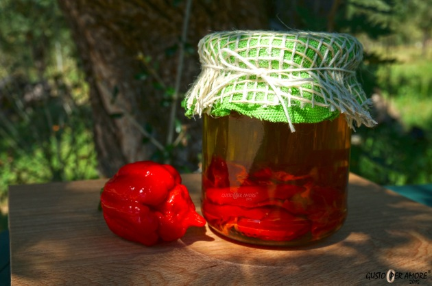 Trinidad Moruga Scorpion red peppers infused olive oil